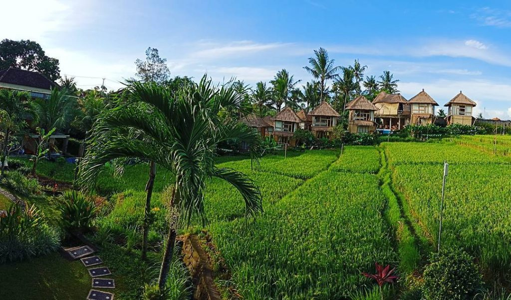 12 Unique and Best Places to stay in Ubud. Where to stay in Ubud Bali biyukukung