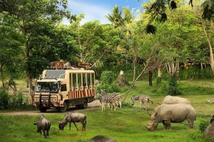 Bali Safari and Marine Park.