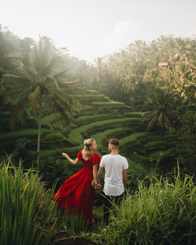 Best rice fields in Ubud. Tegallalang Rice Terrace walk tegallalang sunset