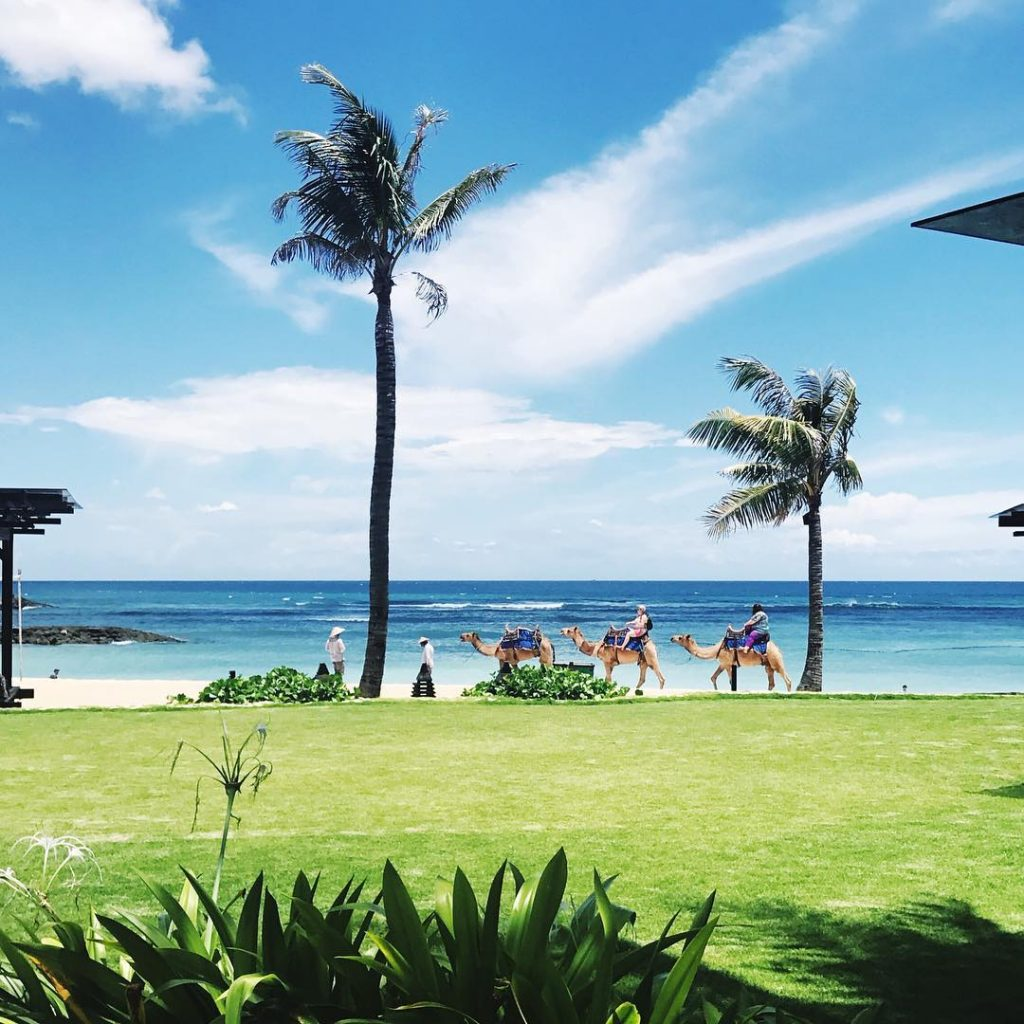 Things to do in Nusa Dua. Resorts in Nusa Dua. Restaurants in Nusa Dua. nusa dua beach